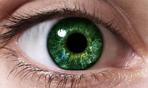 Зеленая радужка глаза