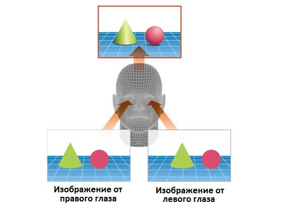 Принцип бинокулярного зрения