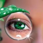 Народные методы борьбы с катарактой