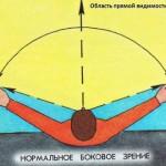 Периферическое зрение человека